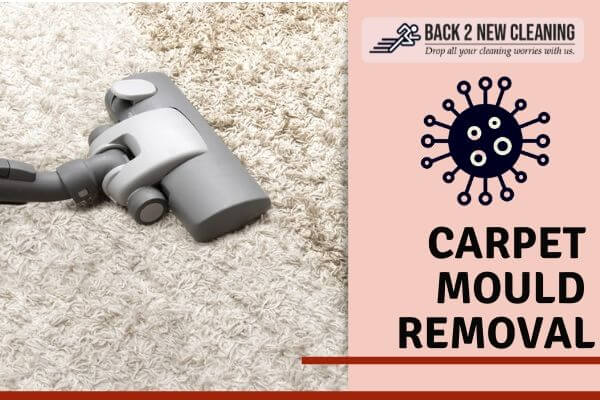 Carpet Mould Restoration Lutwyche