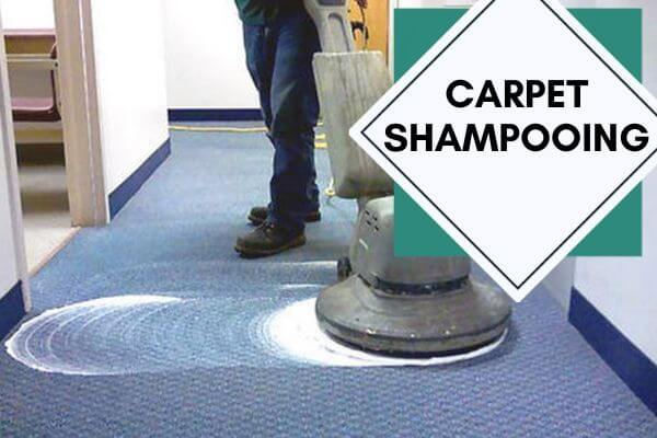 Carpet shampooing