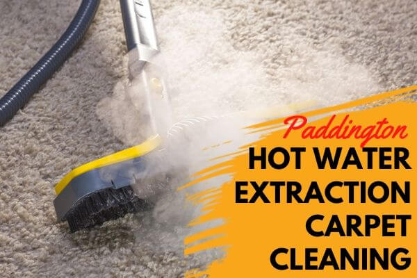 Hot Water extractiion Carpet Cleaning