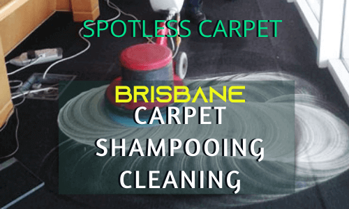 Spotless Carpet Cleaning with Shampooing
