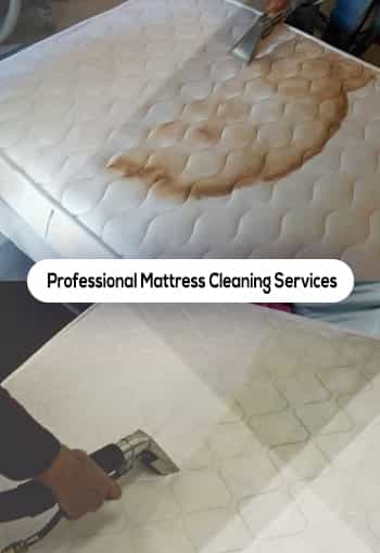 Professional Mattress Cleaning Services in Brisbane