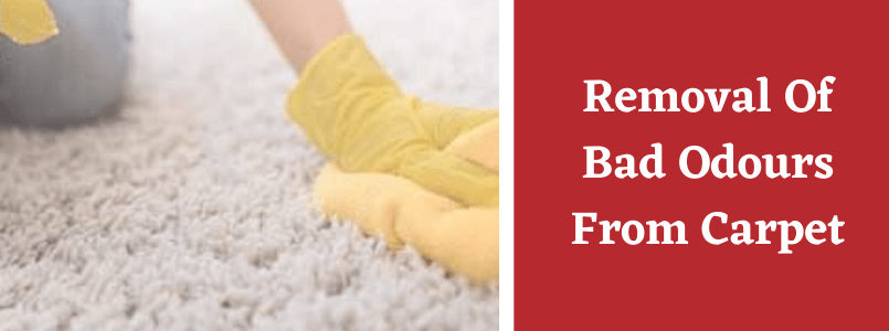 Removal Of Bad Odours From Carpet