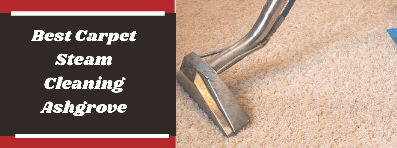 Best Carpet Steam Cleaning Ashgrove