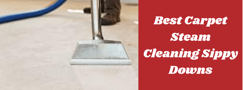 Best Carpet Cleaning Sippy Downs