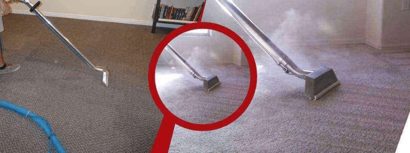 Local Carpet Cleaning Pagewood