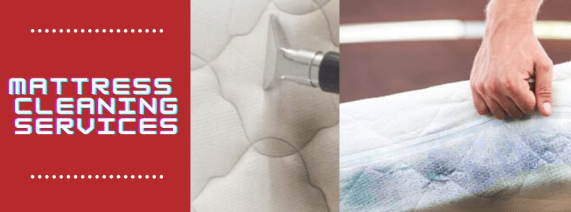 Mattress Cleaning Services in Forest Lake