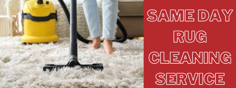 Same Day Rug Cleaning Service