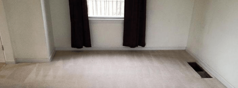 Best Carpet Cleaning Indooroopilly