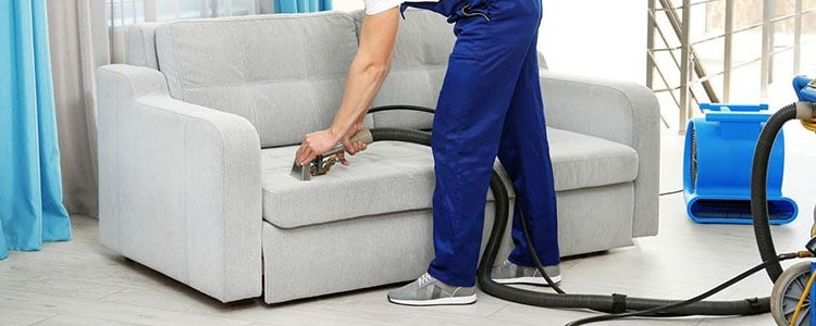 Expert Couch Maintenance Service