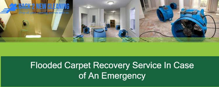 Flooded Carpet Recovery Service In Case Of An Emergency