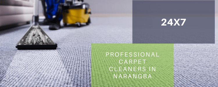 Professional Carpet Cleaners in Narangba