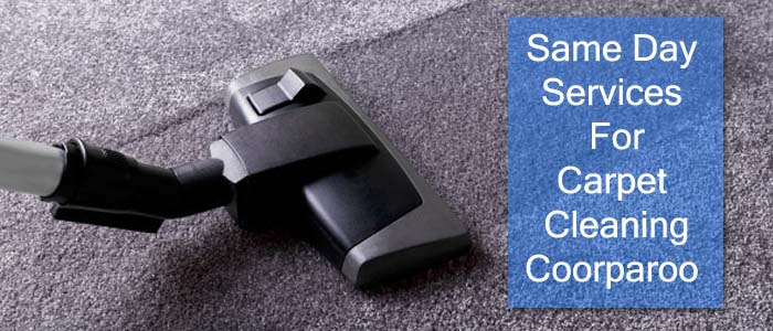 Same Day Services For Carpet Cleaning Coorparoo
