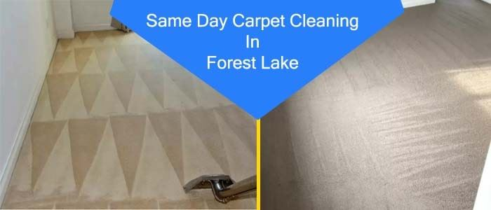 Same day Carpet Cleaning Service in In Forest Lake