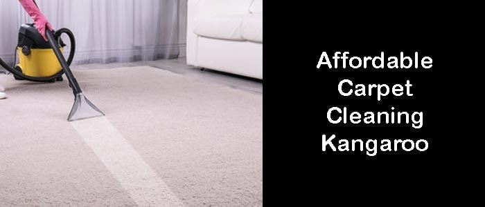 Affordable Carpet Cleaners Kangaroo Point