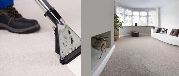 Best Carpet Cleaning Mountain Creek