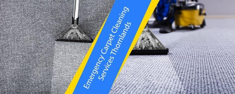 Emergency Carpet Cleaning Services Thornlands