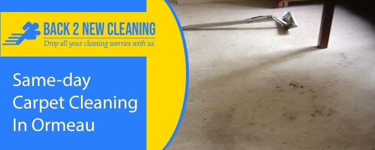 Same Day Carpet Cleaning In Ormeau