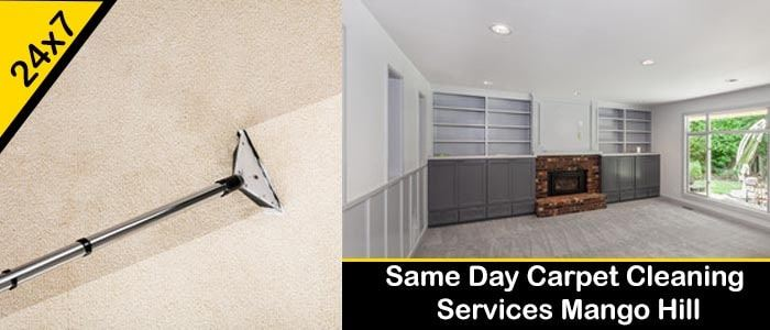 Same Day Carpet Cleaning Service Mango Hill