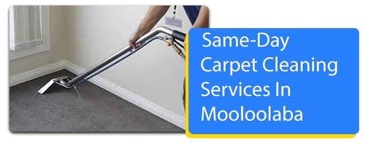 Same Day Carpet Cleaning Service Hope Island