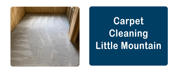 Carpet Cleaning Little Mountain
