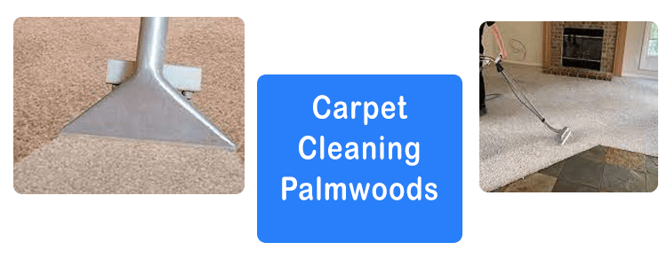 Carpet Cleaning Palmwoods